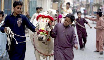 Pakistan Eid al Adha